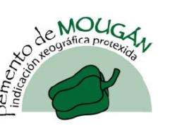Pemento de Mougán